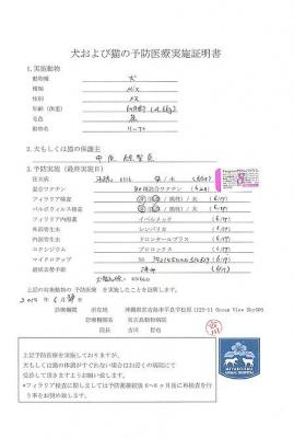 リップ医療明細190628