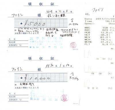 ファイン医療明細171103&180110