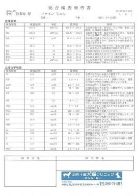 ファイン医療明細190628