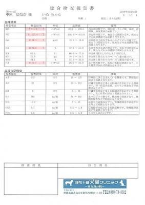 キャビア医療明細190305-1