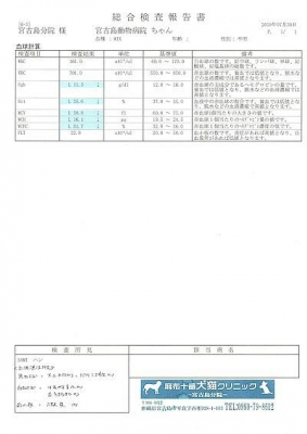 ハン医療明細190730-1