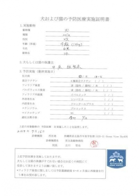 フネ医療明細190716