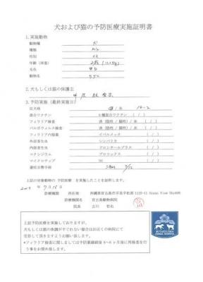 サザエ医療明細190716