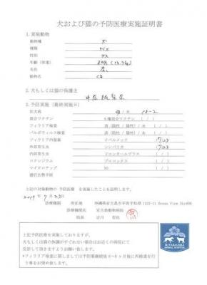 くま医療明細190723