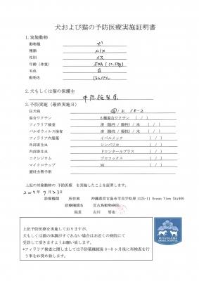 はんぺん医療明細190723