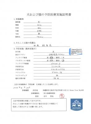 ファイン医療明細190514-1