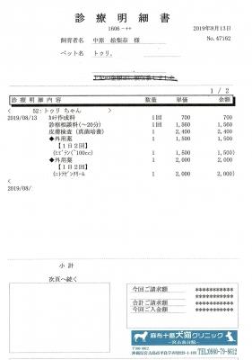 トゥリ医療明細190813