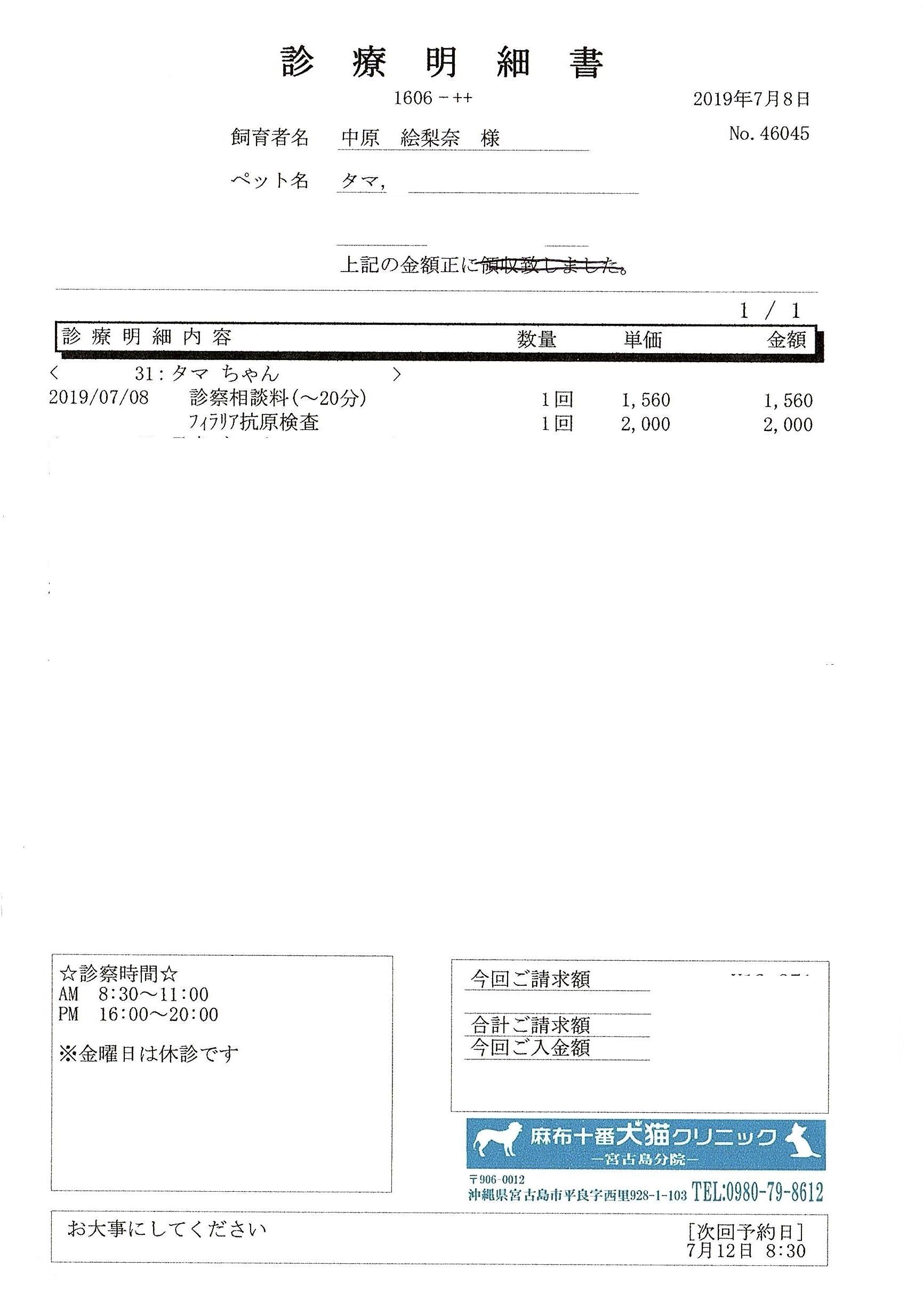 タマ診療明細2