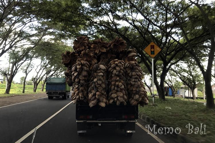 バリ島 軽トラ 大量ヤシの実皮 MemoBali