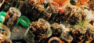 Hstay olives IMG_1002