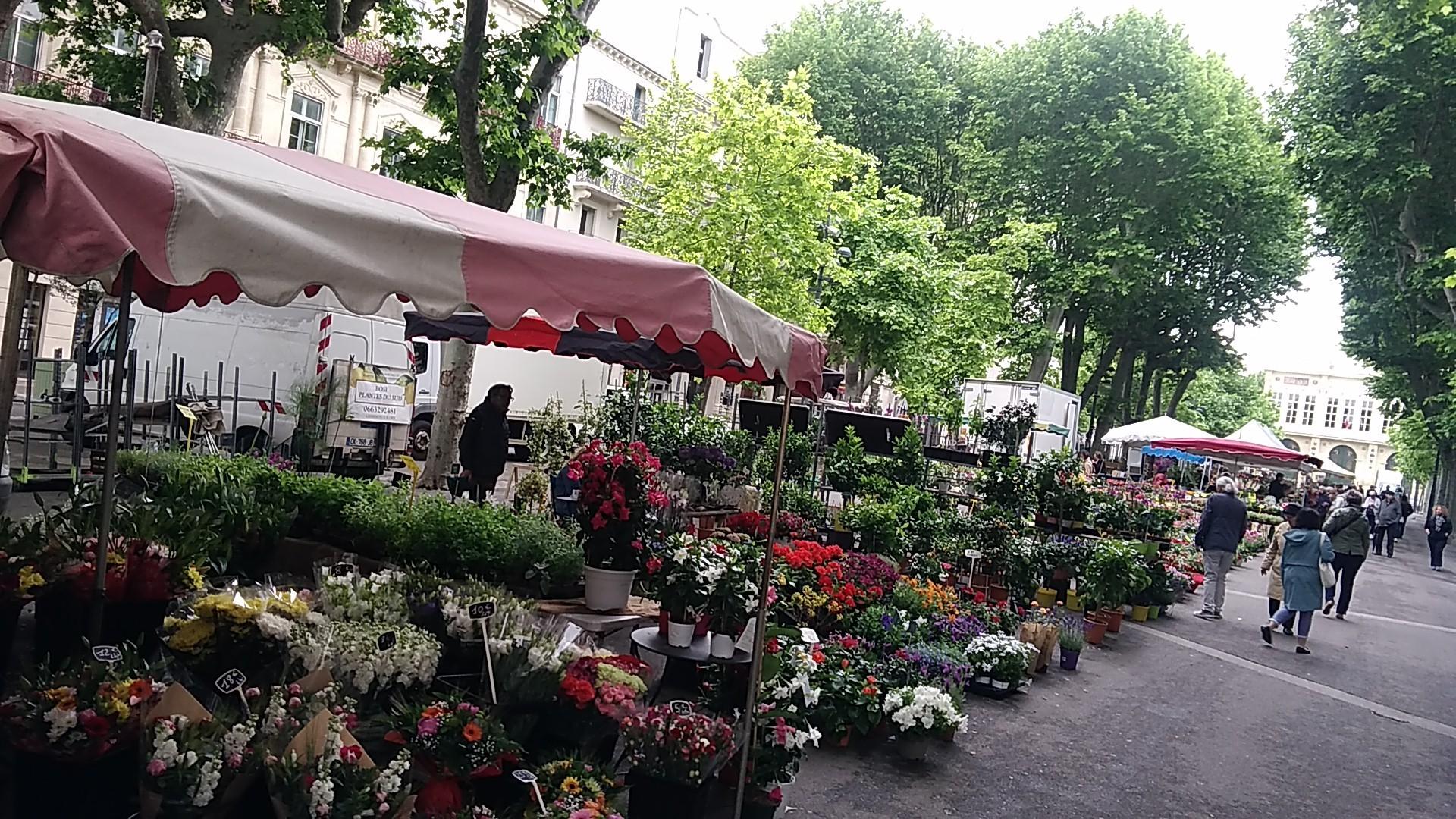 B084-Marche aux fleurs (3)