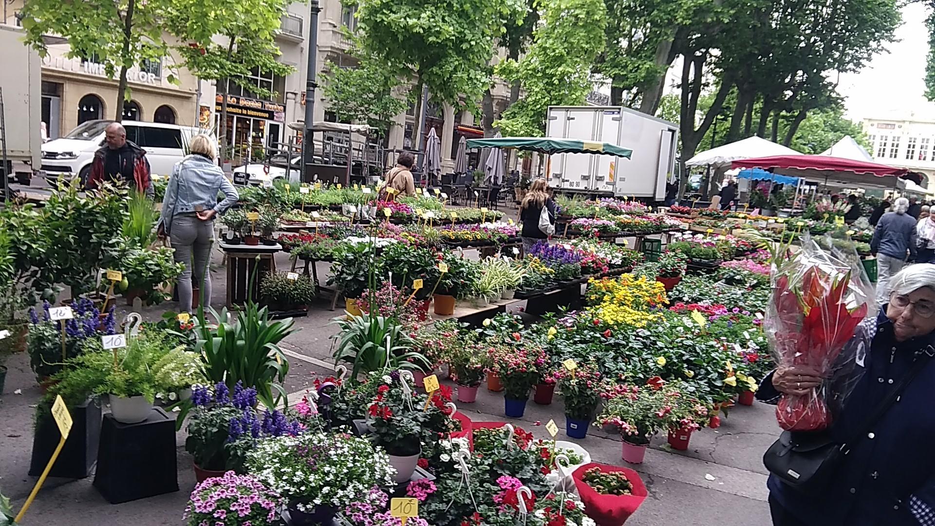 B084-Marche aux fleurs (2)