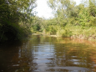 B090-La Rivière (5)