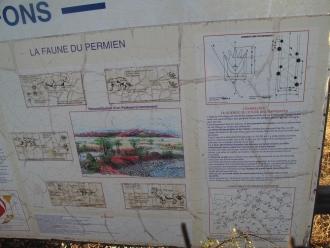 B093-Lac du Salagou (16)