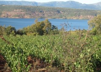 B093-Lac du Salagou (14)