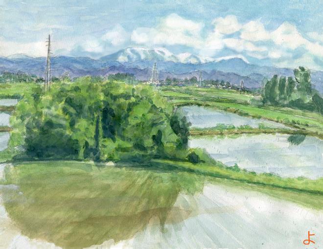 切り抜き完成_パノラマ1
