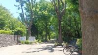行田公園DSC_4768