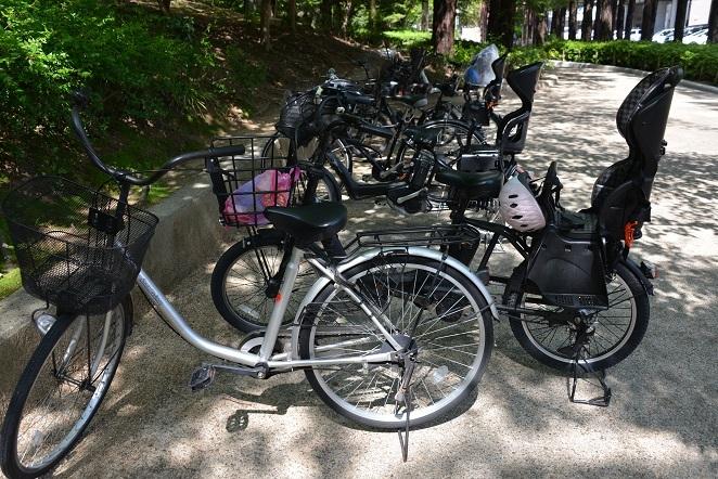 薄暑 自転車