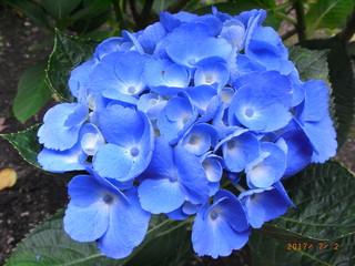 blog_import_5d4ed2b6b3f02.jpg