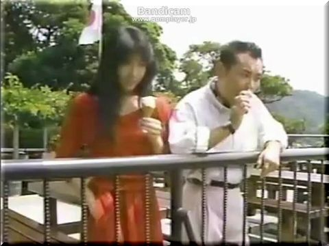 季節のなかの海岸物語 真夏のヒコーキ雲 (1988)