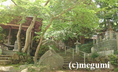 2019-5-19sumaho-mugi5.jpg
