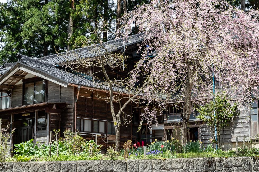 190428入広瀬980-6276