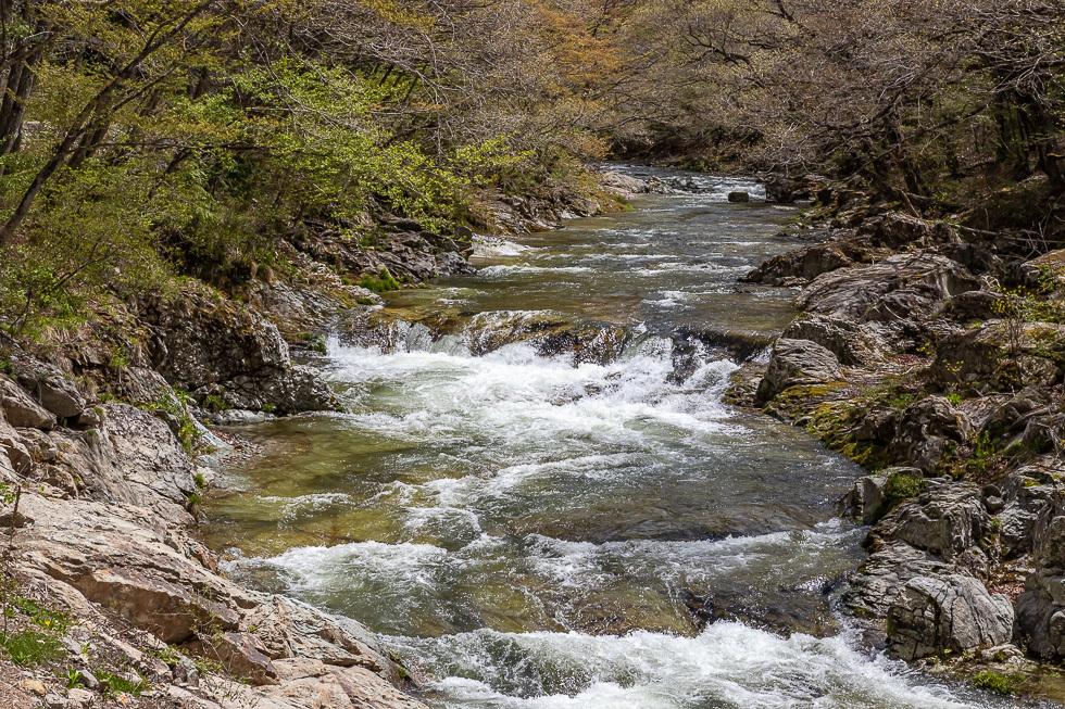 190507五十里湖980-6727