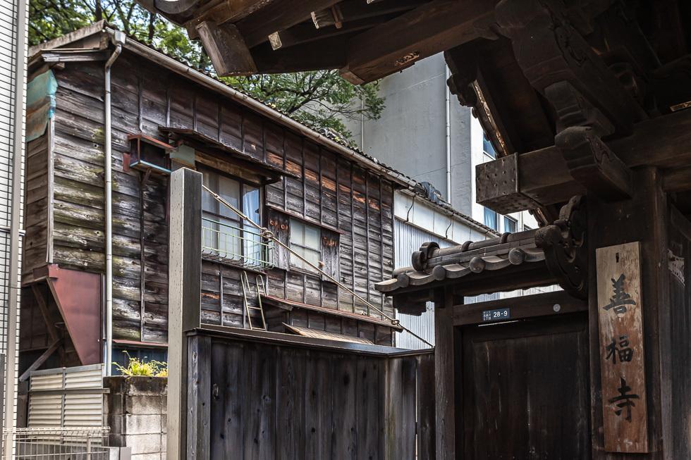 190616梅屋敷980-8062