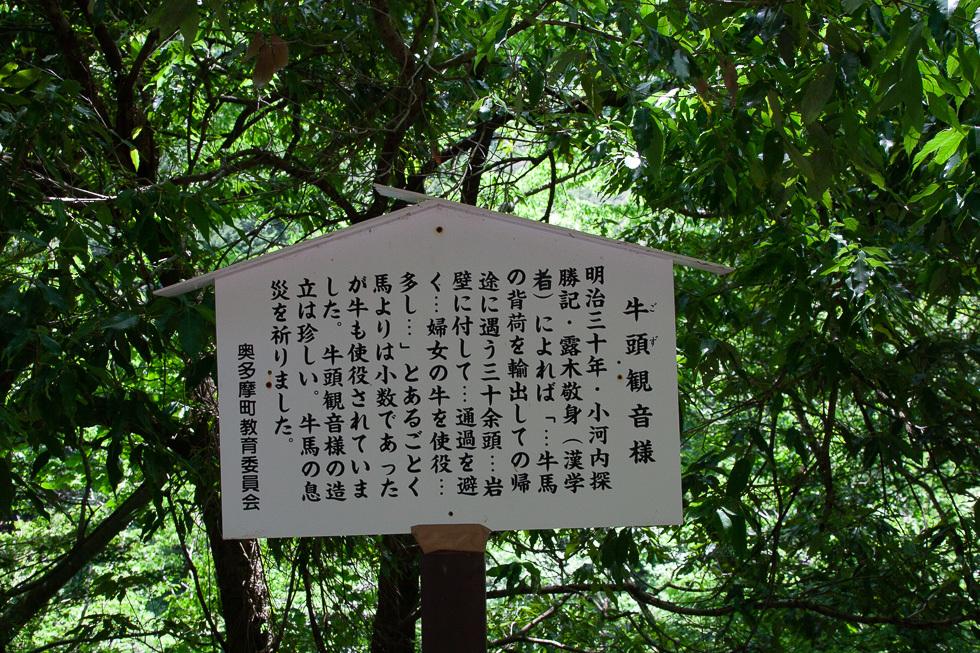 160604むかし道-7739