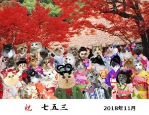 桜子ちゃん♪3878