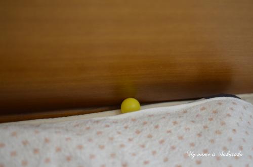 桜子の仕業333