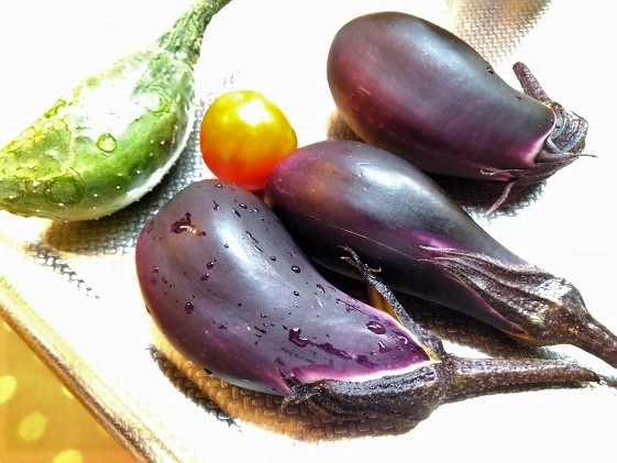190813家庭菜園の野菜