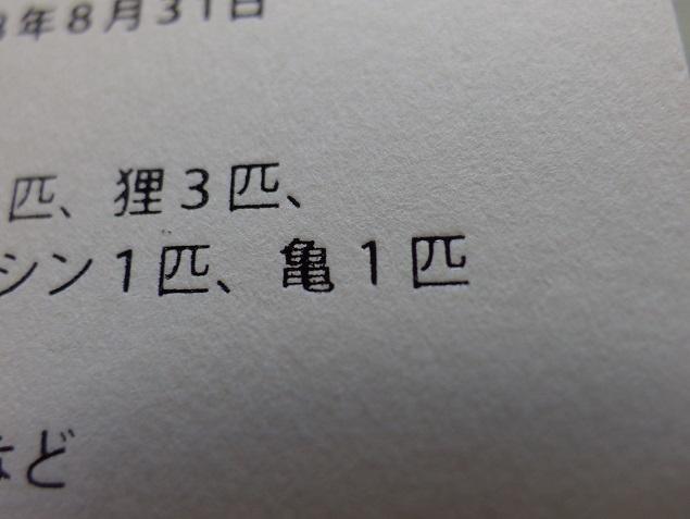 IMGP3966.jpg