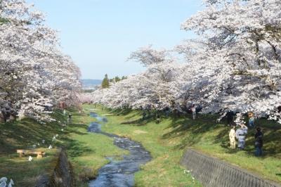 kannonjigawa50.jpg