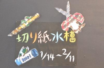 kawasemi105.jpg