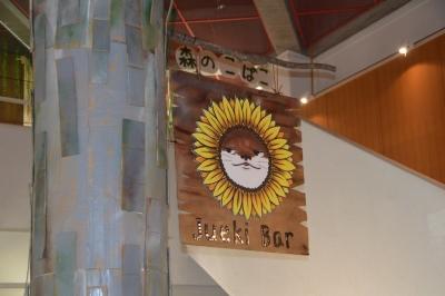 kawasemi201.jpg