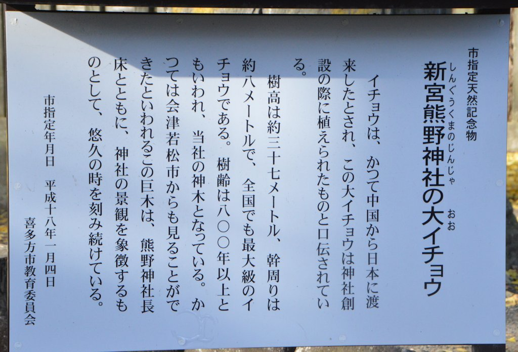 nagatoko05.jpg