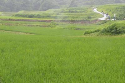takasatotanada131.jpg