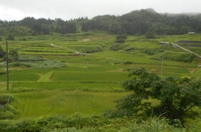 takasatotanada138.jpg