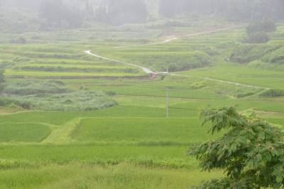 takasatotanada142.jpg