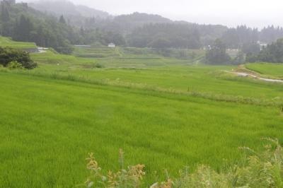 takasatotanada143.jpg