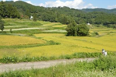 takasatotanada171.jpg