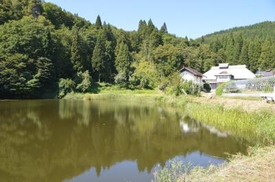 takasatotanada173.jpg