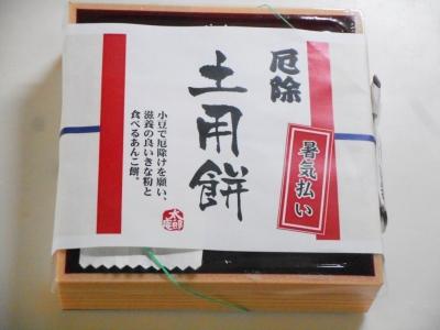 taroan-natu31.jpg