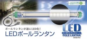 ledpole-title-pho.jpg