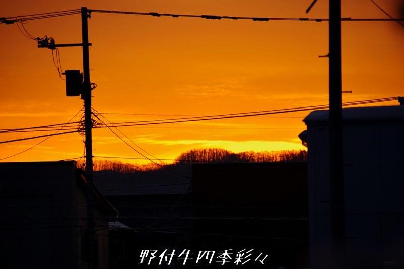 s-IMGP3361.jpg