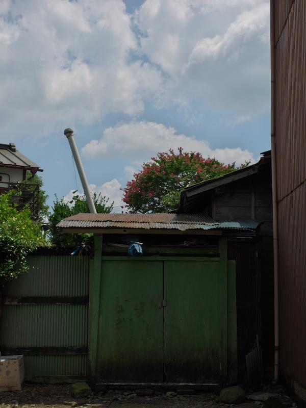 P1647880.jpg