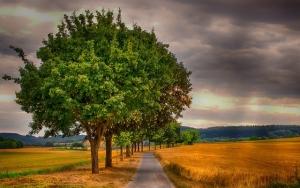landscape-3521472_640.jpg