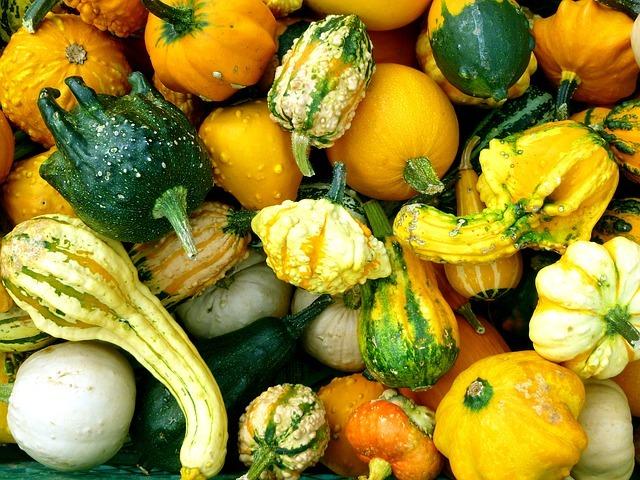 pumpkins-1670513_640.jpg