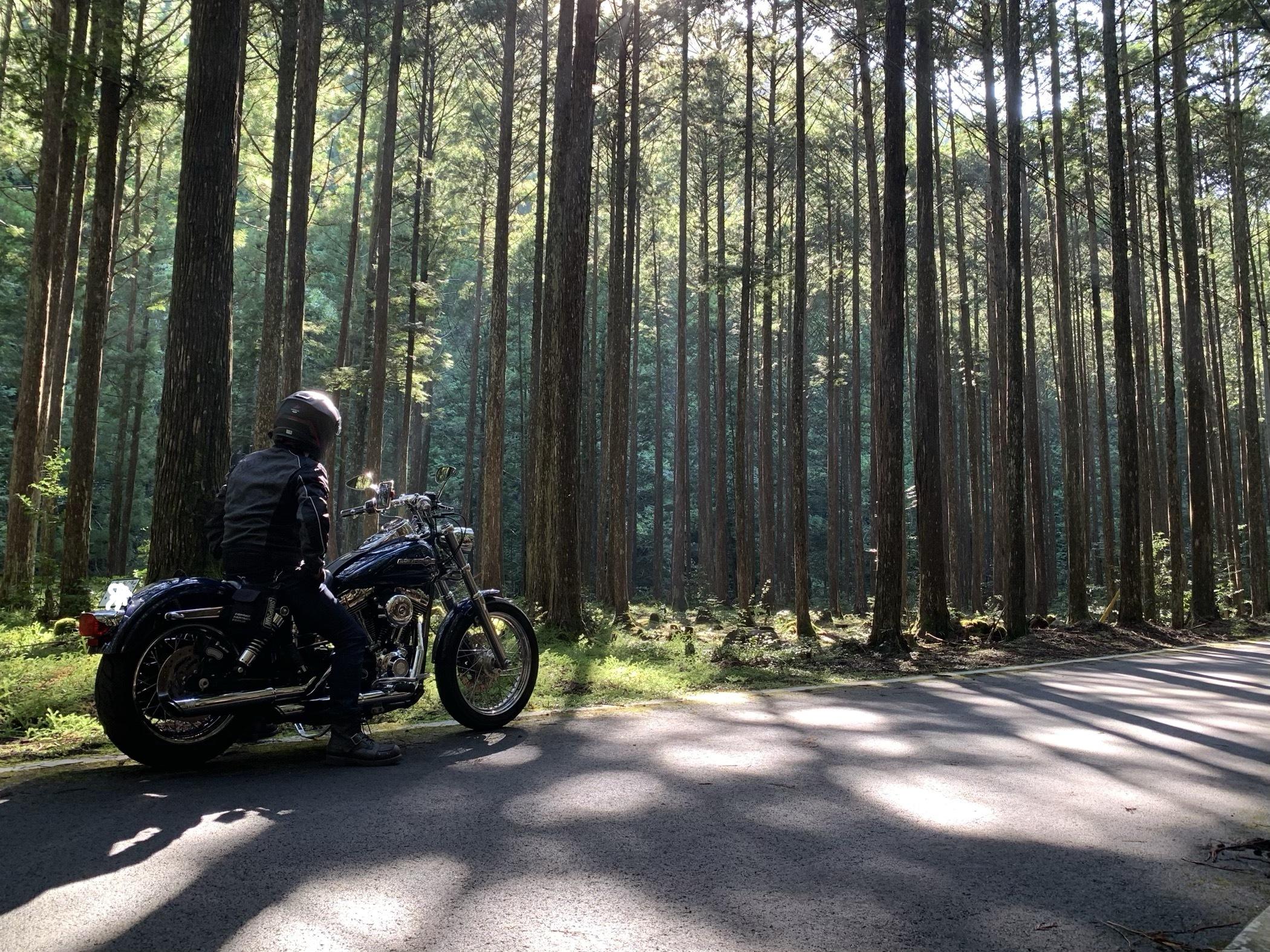 ぴーきち&ダイナ ハーレー で行く 十津川村 ツーリング 下北山村
